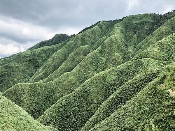 遇見「抹茶山」綠谷風景