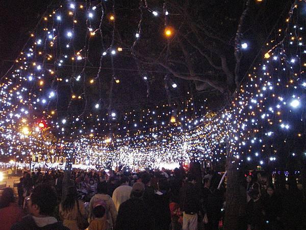 燈會中的滿天星