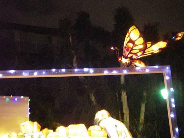 燈會荷花池旁蝴蝶
