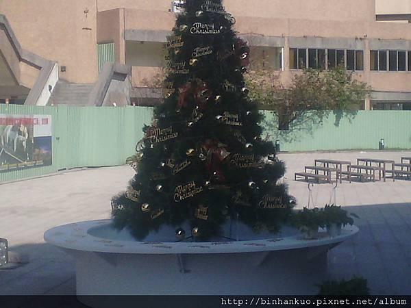 IMG_20121216_105856