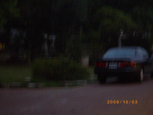 IMGP4979.JPG