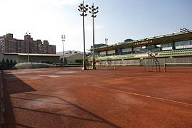 樹林網球場.jpg