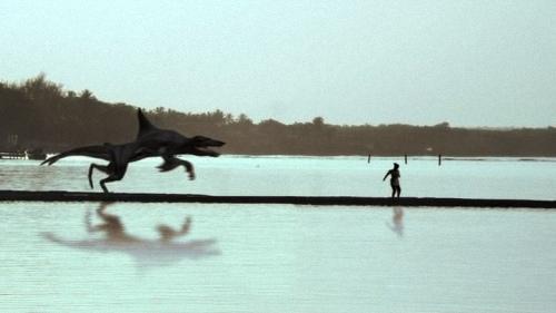 八爪鯊對鯨狼 (1).jpg
