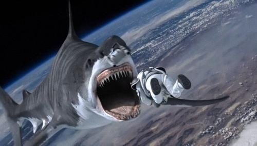 風飛鯊3太空.jpg