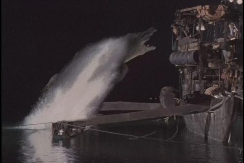 大海鱷出現.jpg