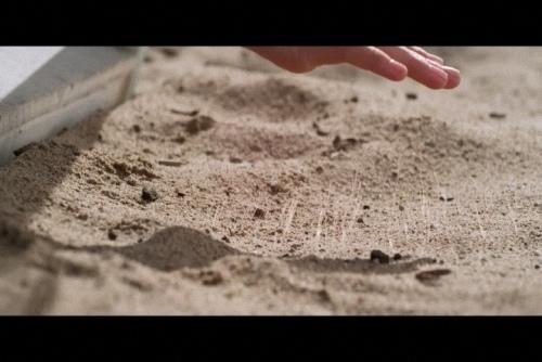 這個沙灘會吃人 (4).jpg