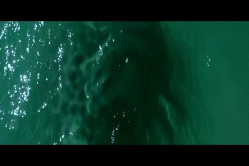 這個沙灘會吃人 (13).jpg