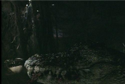 兇鱷 (7).jpg