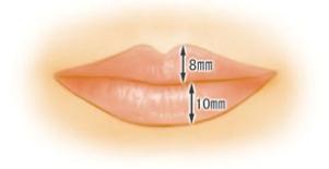 完美唇厚度圖