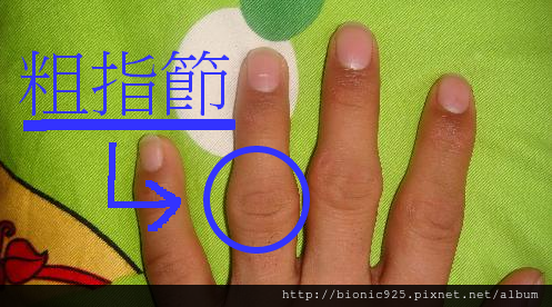 ring_size04.png