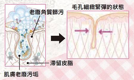 【肌膚保養】初春美肌保養步驟教學一 - 清潔!1