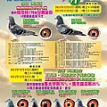 2014年 KK賽鴿網拍