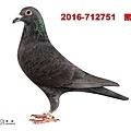 2016-712751    黑母