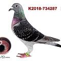 auction_thumbnail (45).jpg