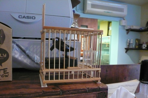 米托拉特地從高雄寄來的可愛啄木鳥