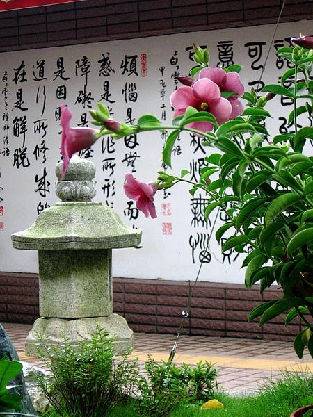 虎形山公園+千佛山菩提寺 140.jpg