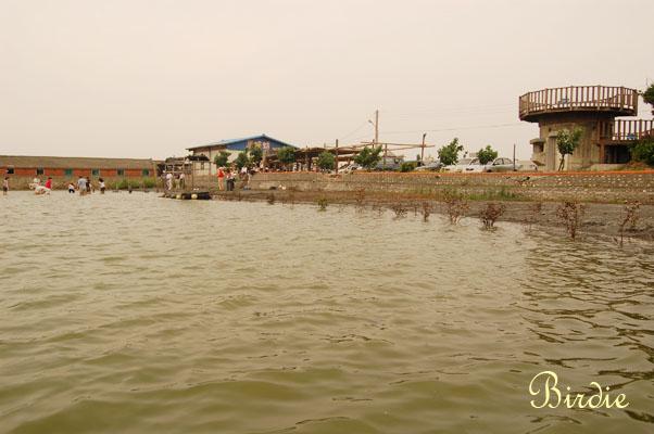 養殖池.jpg
