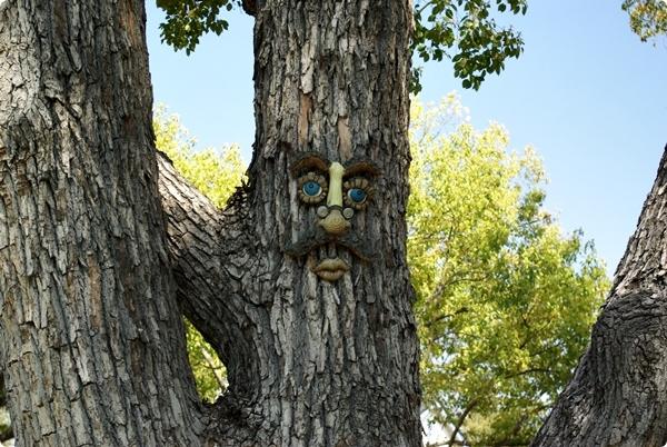樹上的臉-2