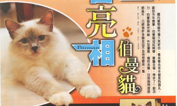 E-magazine 2.jpg