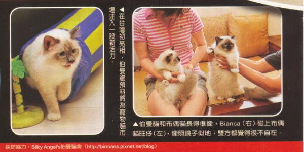 E-magazine 6.jpg