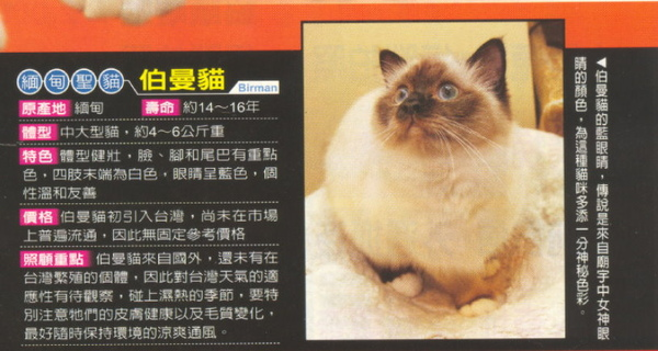 E-magazine 1.jpg
