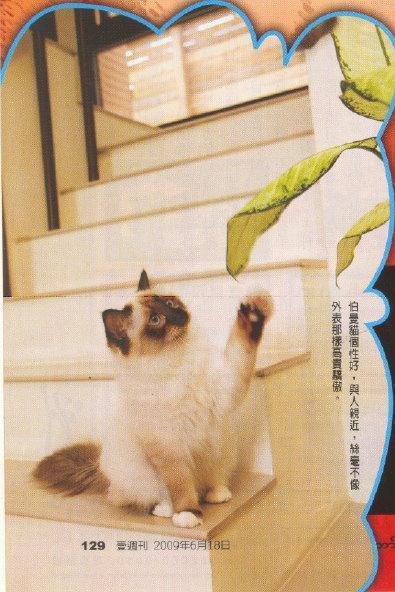 E-magazine 5.jpg
