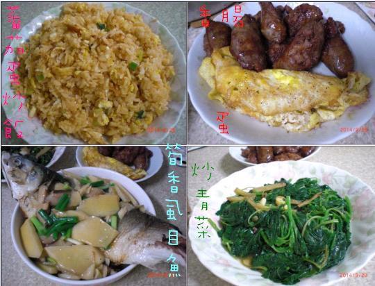 29我愛蕃茄蛋炒飯 香腸魚菜蛋