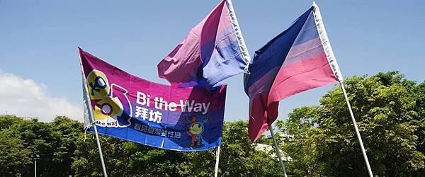 國際雙性戀驕傲旗@臺灣同志遊行