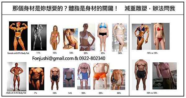 體脂肪VS身材