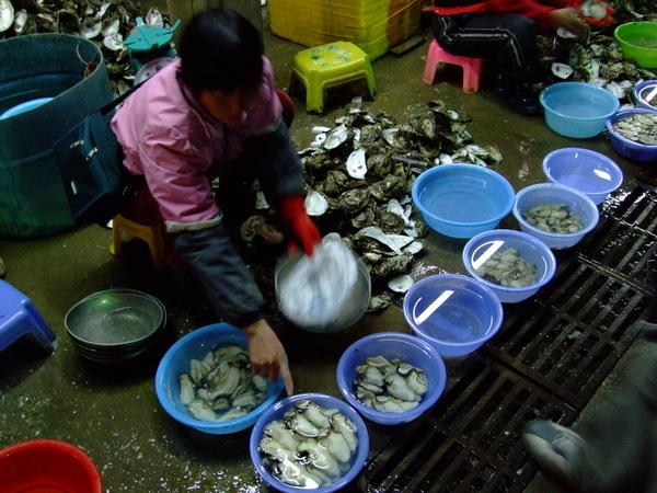 seafood 06