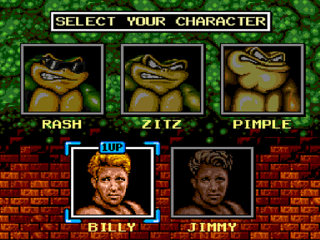 Battletoads and Double Dragon (U) [c][!]003