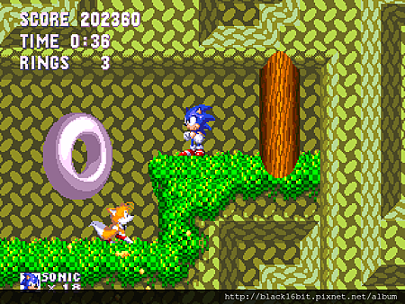 Sonic and Knuckles & Sonic 3 012