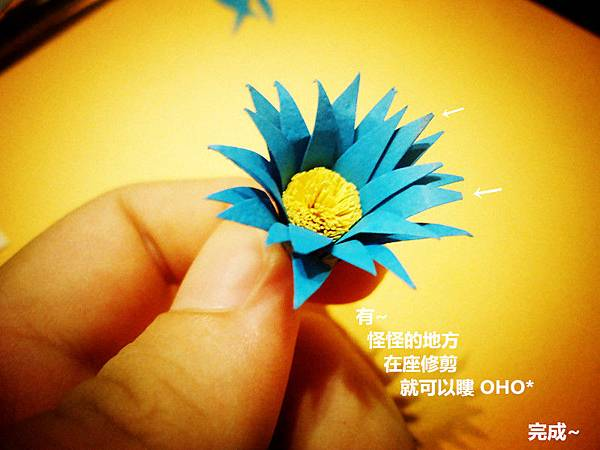 DSC00717_副本