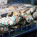 螃蟹專賣大祥海鮮屋台中美食澎湖新鮮直送海產DSC01628.JPG
