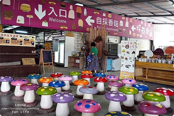 新社親子DIY景點 百菇莊 採菇 吃菇 買菇 DO菇DSC02557.JPG