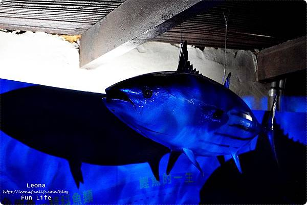 花蓮柴魚博物館  七星柴魚博物館2019 七星柴魚博物館火災重建  七星柴魚博物館商品專門店   柴魚博物館伴手禮 親子景點 室內景點 章魚燒diy 柴魚diyDSC08045.JPG
