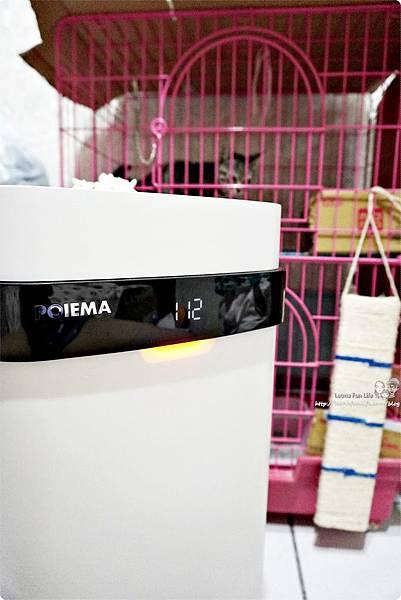 空氣清淨機推薦 POIEMA ZERO 評價 清洗 免耗材空氣清淨機  Zero 清淨機  PO 空氣清淨機 時尚家電 貓奴必備 親子家電DSC09594.JPG