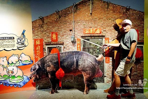 雲林親子景點 良作工場農業文創館 吳季剛哥哥 台灣養豬產業 兒童遊戲區 AR擴增實境遊戲 雨天備案 室內景點 雲林大埤 一日遊 門票 停車 用餐 包廂DSC04464.jpg