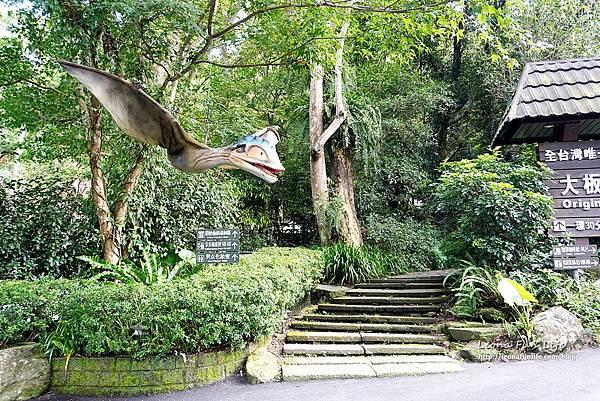新北景點 大板根恐龍展 門票 探索森林 親子房 大板根森林溫泉酒店評價 住宿推薦 親子景點 親子一日遊 溫泉 森林 侏羅紀 DSC06871.JPG