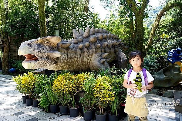 新北景點 大板根恐龍展 門票 探索森林 親子房 大板根森林溫泉酒店評價 住宿推薦 親子景點 親子一日遊 溫泉 森林 侏羅紀 DSC07006.JPG