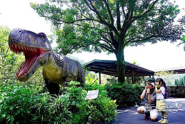 新北景點 大板根恐龍展 門票 探索森林 親子房 大板根森林溫泉酒店評價 住宿推薦 親子景點 親子一日遊 溫泉 森林 侏羅紀 DSC07019.JPG