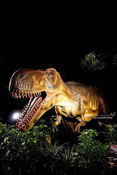 新北景點 大板根恐龍展 門票 探索森林 親子房 大板根森林溫泉酒店評價 住宿推薦 親子景點 親子一日遊 溫泉 森林 侏羅紀DSC06608.JPG