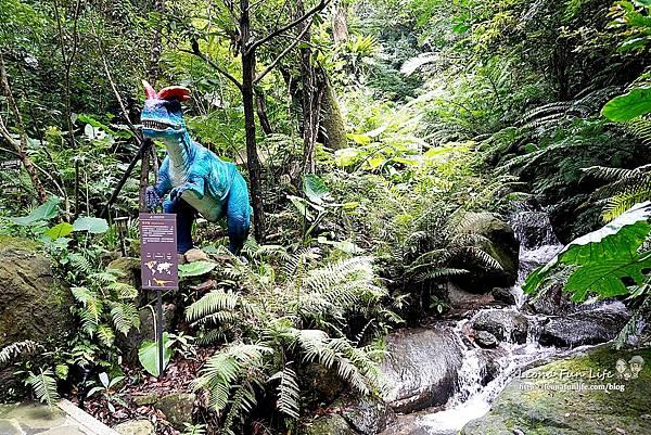 新北景點 大板根恐龍展 門票 探索森林 親子房 大板根森林溫泉酒店評價 住宿推薦 親子景點 親子一日遊 溫泉 森林 侏羅紀DSC06340.JPG