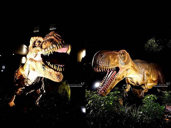 新北景點 大板根恐龍展 門票 探索森林 親子房 大板根森林溫泉酒店評價 住宿推薦 親子景點 親子一日遊 溫泉 森林 侏羅紀DSC06612-horz.jpg