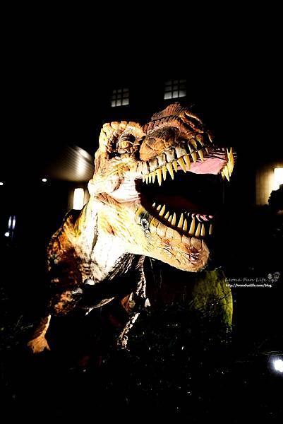 新北景點 大板根恐龍展 門票 探索森林 親子房 大板根森林溫泉酒店評價 住宿推薦 親子景點 親子一日遊 溫泉 森林 侏羅紀DSC06612.JPG