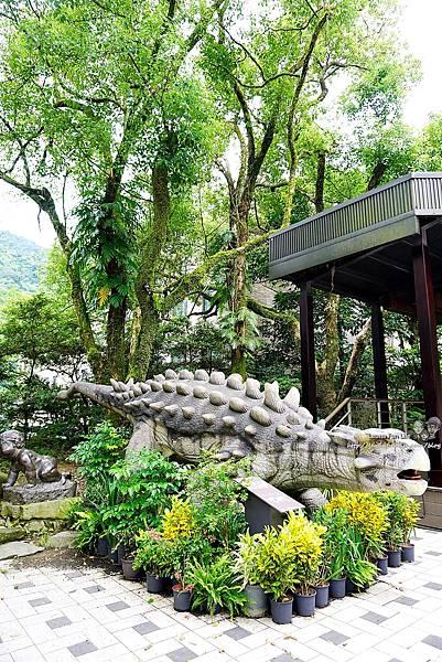新北景點 大板根恐龍展 門票 探索森林 親子房 大板根森林溫泉酒店評價 住宿推薦 親子景點 親子一日遊 溫泉 森林 侏羅紀DSC06304.JPG