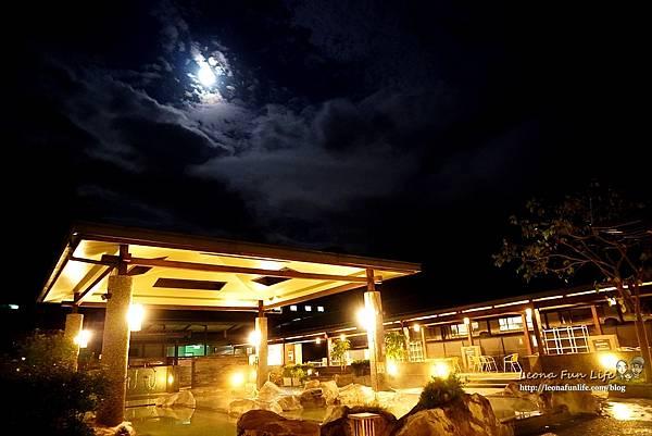 新北景點 大板根恐龍展 門票 探索森林 親子房 大板根森林溫泉酒店評價 住宿推薦 親子景點 親子一日遊 溫泉 森林 侏羅紀DSC06667.JPG
