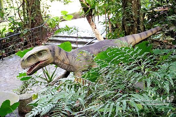 新北景點 大板根恐龍展 門票 探索森林 親子房 大板根森林溫泉酒店評價 住宿推薦 親子景點 親子一日遊 溫泉 森林 侏羅紀DSC06882.JPG
