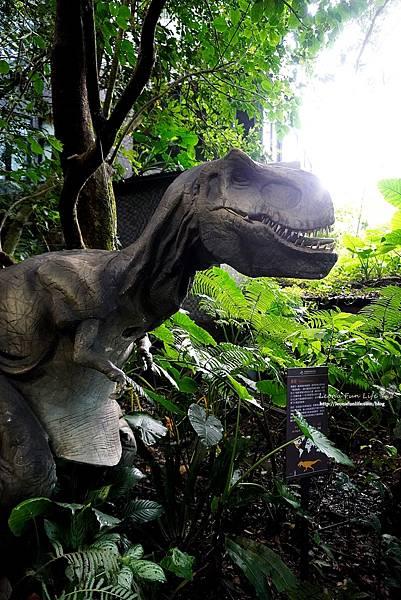 新北景點 大板根恐龍展 門票 探索森林 親子房 大板根森林溫泉酒店評價 住宿推薦 親子景點 親子一日遊 溫泉 森林 侏羅紀DSC06878.JPG