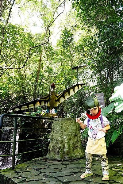 新北景點 大板根恐龍展 門票 探索森林 親子房 大板根森林溫泉酒店評價 住宿推薦 親子景點 親子一日遊 溫泉 森林 侏羅紀DSC07042.JPG